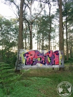 Plastic wrapped trees 3m x 1.9m