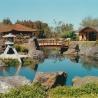 2000 35MM Japanese Gardens East Gosford